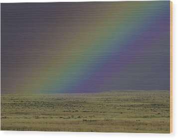 Rainbows End Wood Print
