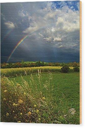 Rainbows Wood Print by Phil Koch