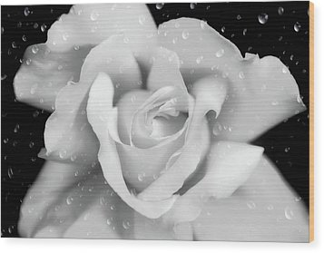 Wood Print featuring the photograph Raindrops On Rose Black And White by Jennie Marie Schell