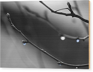 Wood Print featuring the photograph Raindrops by Angela Rath