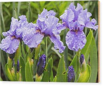 Raindrops On Iris's Wood Print