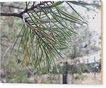 Raindrops Wood Print by Rosie Brown