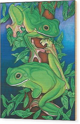 Rainforest Rendezvous Wood Print by Lesley Smitheringale