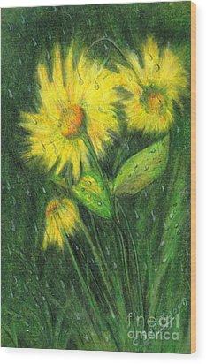 Rainy Daisy Wood Print by Carol Sweetwood