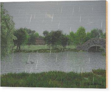 Rainy Day At The Lake Wood Print by Jayne Wilson