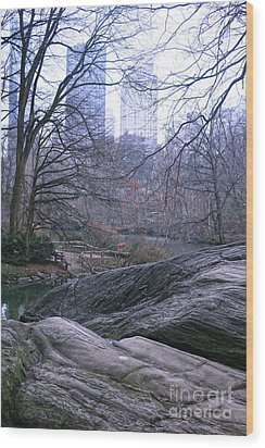 Rainy Day In Central Park Wood Print by Sandy Moulder