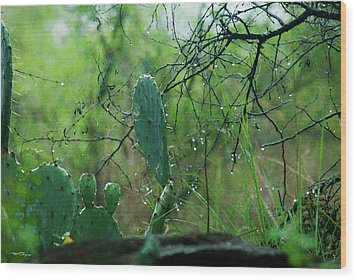 Rainy Day In Central Texas Wood Print by Travis Burgess