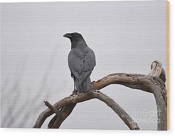 Rainy Day Raven Wood Print