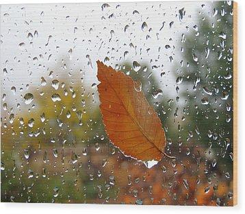 Rainy Day Visitor Wood Print