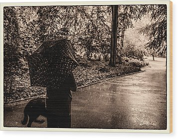 Wood Print featuring the photograph Rainy Day - Woman And Dog by Madeline Ellis