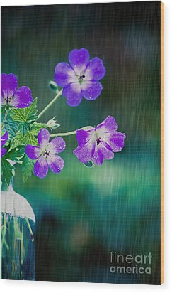 Wood Print featuring the photograph Rainy Days And Mondays by Jan Bickerton
