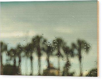 Rainy Daze Wood Print by Christopher L Thomley