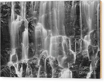 Ramona Falls Close-up Wood Print