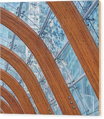 Random 382 Wood Print