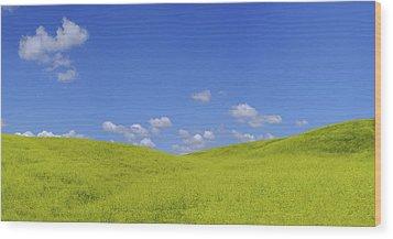 Rapeseed Landscape Wood Print by Marius Sipa