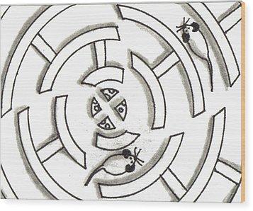 Rat Race Mouse Maze Wood Print by Joshua Hullender
