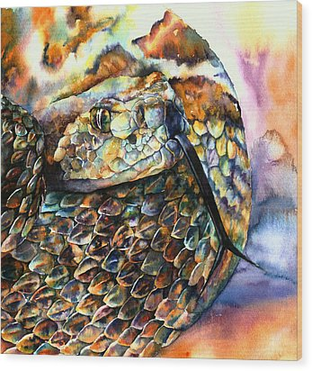 Rattle Snake Wood Print by Christy  Freeman