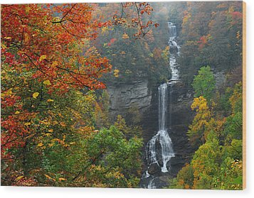 Raven Cliff Falls Wood Print