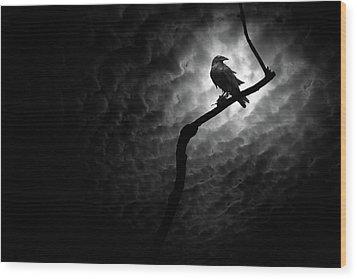 Raven, Death Valley Wood Print by Marius Sipa