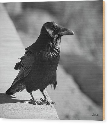 Raven Iv Bw Wood Print by David Gordon