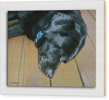 Raven Resting Wood Print