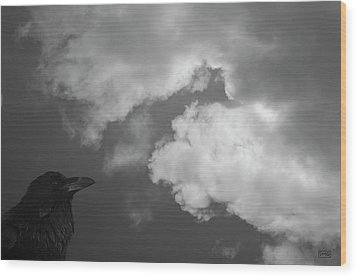 Raven Vi Bw Wood Print by David Gordon