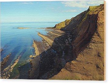 Ravenscar Cliffs Wood Print by Svetlana Sewell