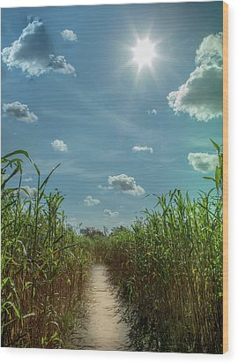 Wood Print featuring the photograph Rays Of Hope by Karen Wiles