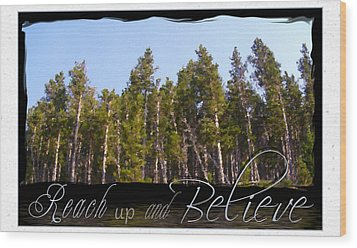 Wood Print featuring the photograph Reach Up And Believe by Susan Kinney
