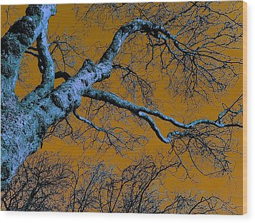 Reaching For The Skies Wood Print