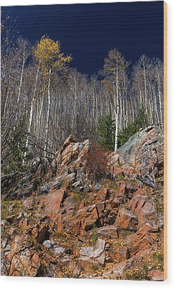 Wood Print featuring the photograph Reaching Into Blue by Stephen Anderson