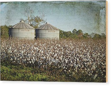 Ready For Harvest Wood Print by Jan Amiss Photography