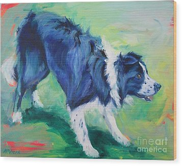 Ready To Fly - Border Collie Wood Print