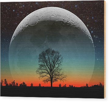 Wood Print featuring the photograph Really Big Deal by Larry Landolfi