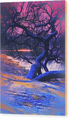 Reclining On The Banks Wood Print by Kat Besthorn