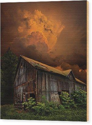 Recluse Wood Print by Phil Koch