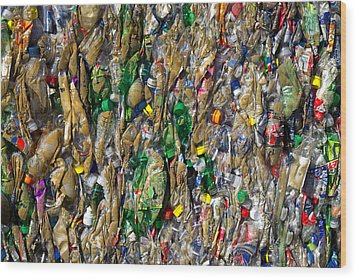 Recycled Plastic Bottles Wood Print by David Buffington