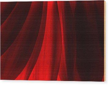 Red Abstract Of Chrysanthemum Wildflower Wood Print