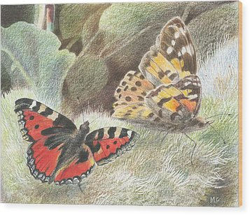 Red Admiral And A Painted Lady Wood Print by Maureen Carter