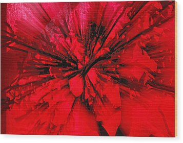 Wood Print featuring the photograph Red And Black Explosion by Susan Capuano