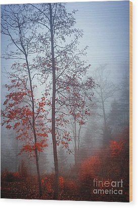 Wood Print featuring the photograph Red And Blue by Elena Elisseeva