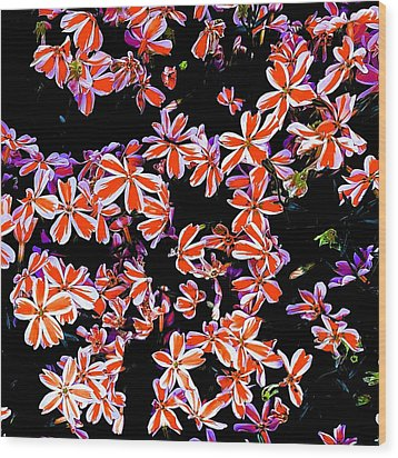 Red And White Flowers Wood Print