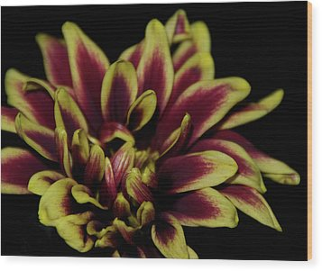 Wood Print featuring the photograph Red And Yellow 2 by Sheryl Thomas
