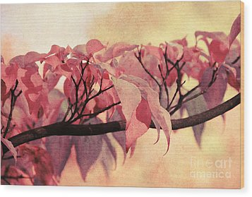 Red Autumn Day Wood Print by Angela Doelling AD DESIGN Photo and PhotoArt