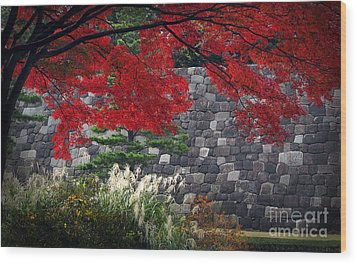 Red Autumn Wood Print by Eena Bo
