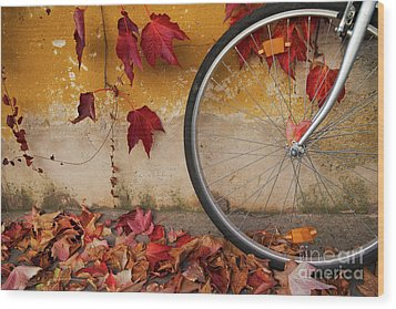 Wood Print featuring the photograph Red Autumn by Yuri Santin