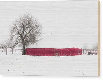 Red Barn In Winter Wood Print by Tamyra Ayles