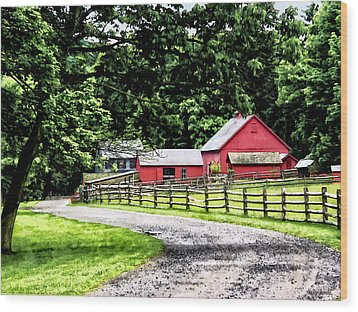 Red Barn Wood Print by Susan Savad