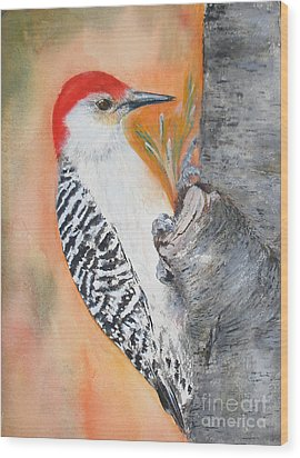 Red Bellied Male Woodpecker Wood Print by Sibby S