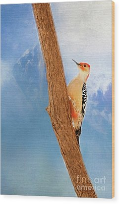 Wood Print featuring the digital art Red Bellied Woodpecker by Darren Fisher